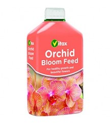 Orchid Bloom Feed