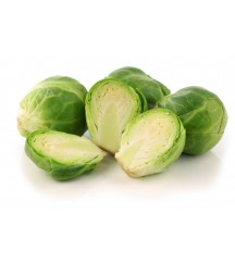 NAUTIC F1 BRUSSELS SPROUTS