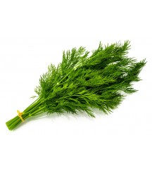 GREENSLEEVES DILL