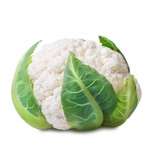 JANVEL F1 CAULIFLOWER