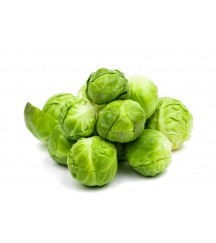 DAGAN F1 BRUSSELS SPROUTS