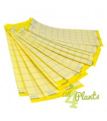 RUSSELL IPM YELLOW GLUE BOARD