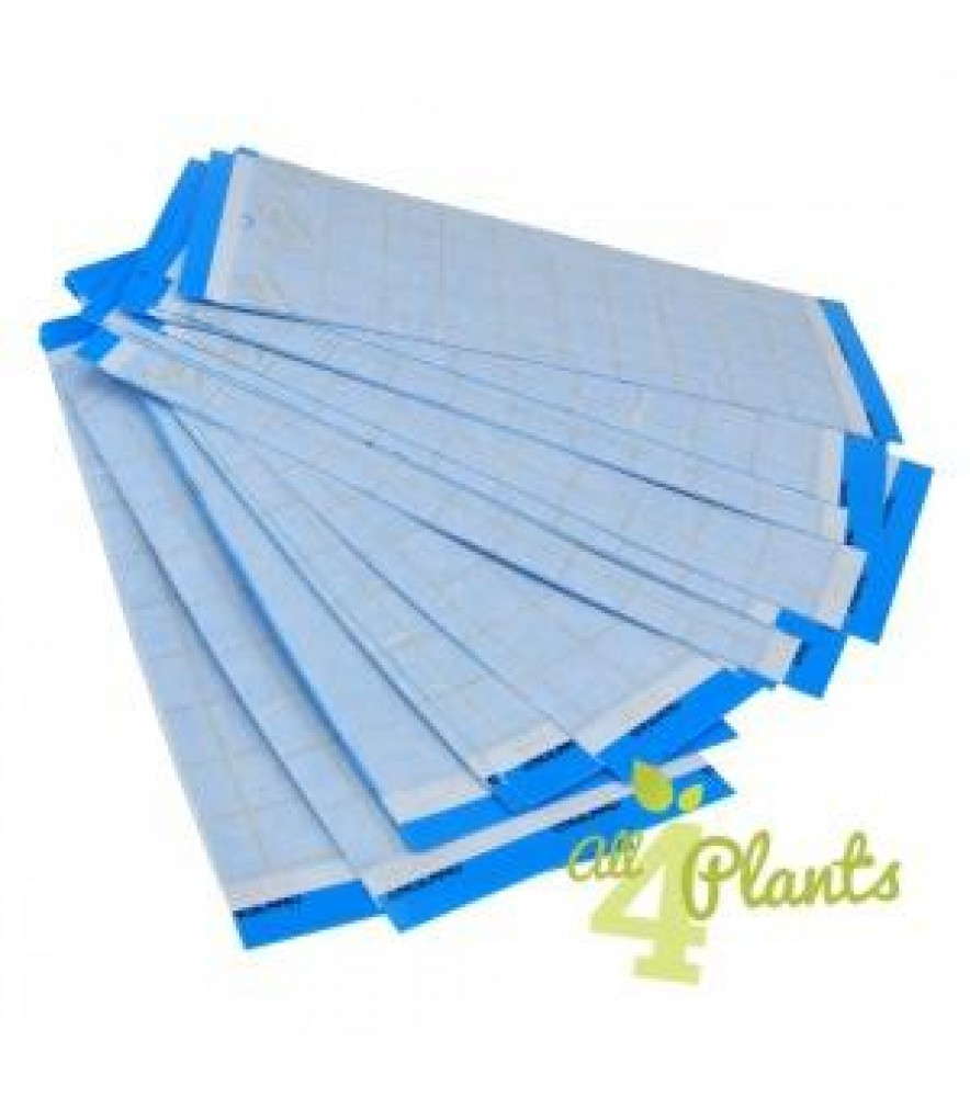 RUSSELL IPM BLUE GLUE BOARD