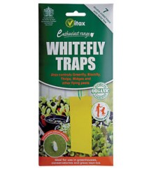 Whitefly Traps
